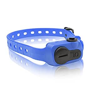 Dogtra IQ Bark Collar, Blue