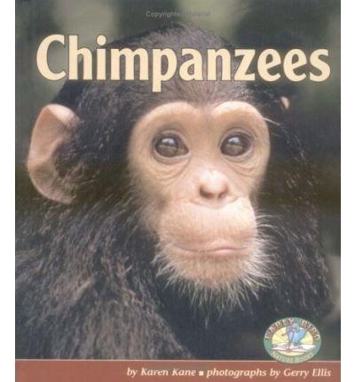 -chimpanzees-by-karen-kane-sep-2004