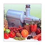 The Worlds Finest Champion Househould Juicer, Silver