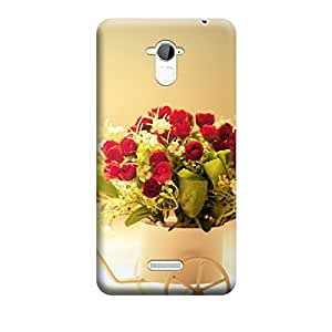 Ebby Premium Printed Mobile Back Case Cover With Full protection For CoolPad Note 3 (Designer Case)