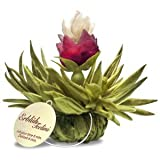 Pack de 4 Tealini - Découvrez les Fleurs de thé...