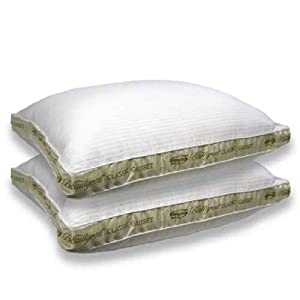 Beautyrest Pima Cotton Stripe Extra Firm Pillow Set - Standard 2 Pack Bed Pillow