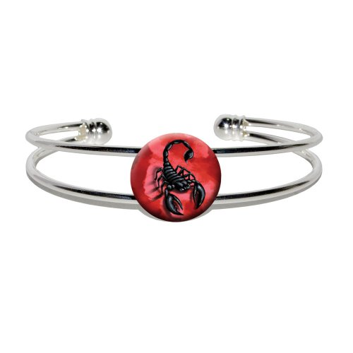 Graphics and More Scorpion on Red - Bug Insect Venom Poisonous - Novelty Silver Plated Metal Cuff Bangle (Womens Poisonous Costume)