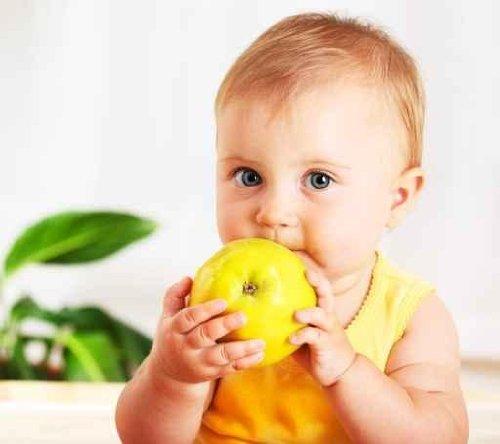 Little Baby Eating Apple - 24
