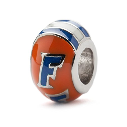 Orange Florida Gators Round Bead Charm - Handpainted Stainless Steel - Fits Pandora Charm Bracelets