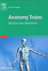 Anatomy Trains: Myofasziale Leitbahnen