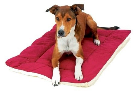 Pet Dreams Classic Sleep Ezz Pet Dog Crate Pad Sleeper Bed Mat - Large / Burgundy front-992938