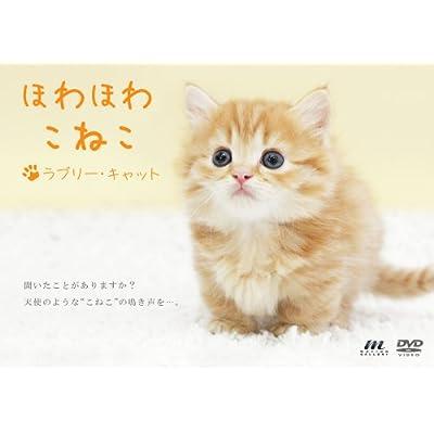ほわほわこねこ ラブリー・キャット [DVD]