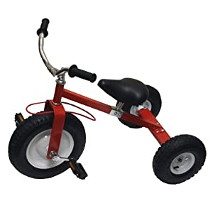 All Terrain Tricycle