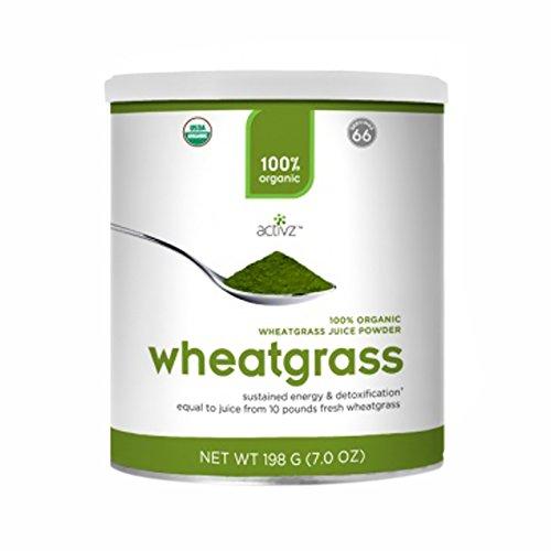 Activz Organic Wheatgrass Powder - Large front-60644