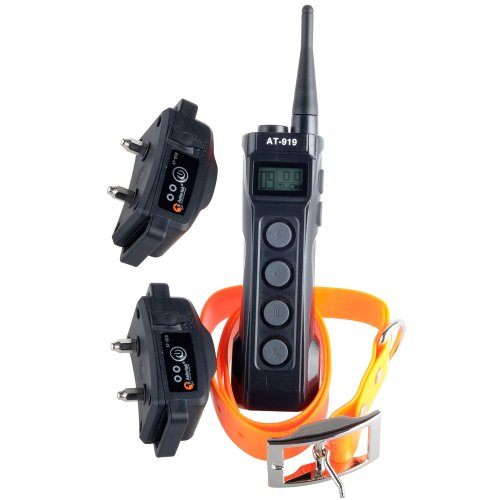 New Aeteretk At-919 Professional 2 Dogs Training 100% Waterproof Remote 1000M Large Dog Shock Collar Rechargeable 10 Levels Correction