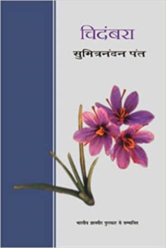 Best Hindi Novels That Everyone Should Read : Chidambara
