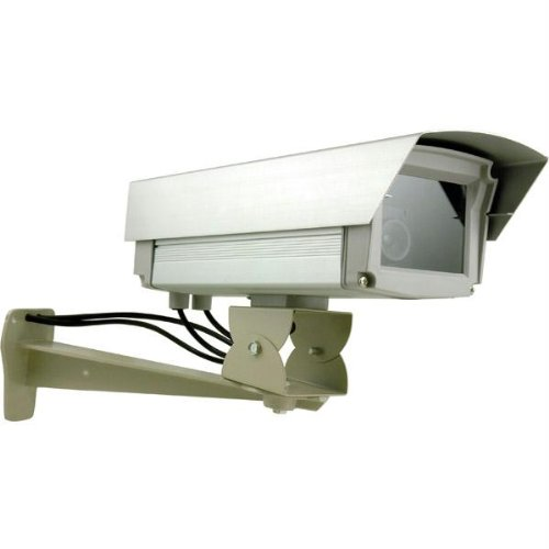 Simulated Outdoor Professional Surveillance Camera Authentic Look And Feel