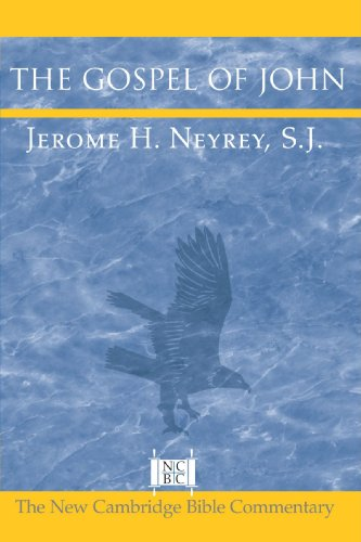 The Gospel Of John (New Cambridge Bible Commentary) front-958476