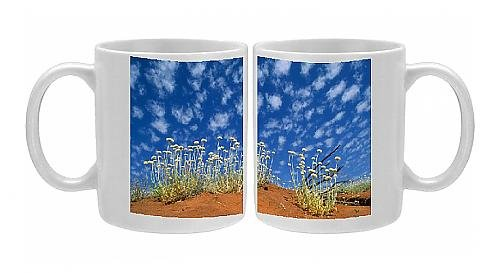 Photo Mug Of Central Australia - Poached Egg Daisy, Desert Vegetation front-571545