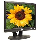Dell E153FP 15-inch Flat Panel Color LCD Monitor