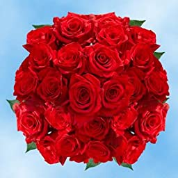 Beautiful Freedom Red Roses | 100 Freedom Red Roses