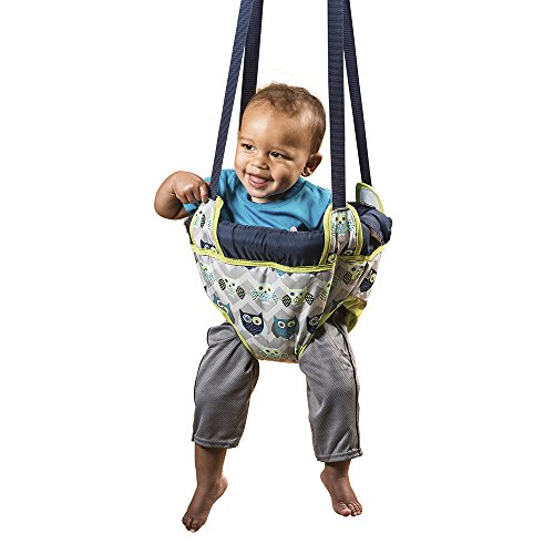 Great Deal! Evenflo Exersaucer Door Jumper, Owl