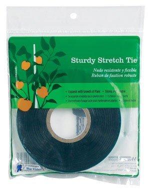 Sturdy Stretch Tie 1/2