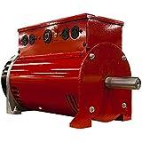Winco TB7200GFI Two-Bearing Generators, 7200W Output, 154 lb.