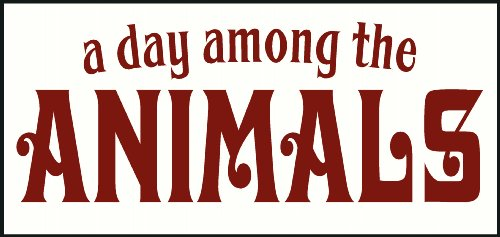 Wall Decor Plus More A Day Among The Animals Wall Vinyl Sticker Quote for Nursery or Kid's Room Decor 23W x 9H - Red Red