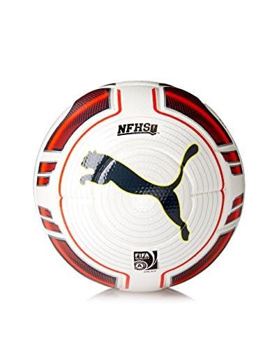 Puma Men's Evopower 2 Match Fifa Approved Soccer Ball