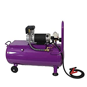 Two Star FD-D150-DC24V Professional 24V DC Oil Free Air Compressor with 50 liters tank (Color: Purple)