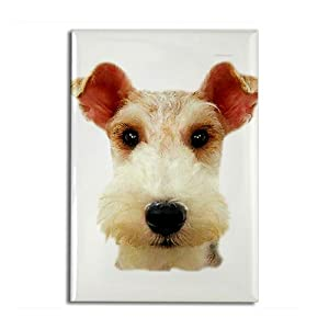 Wired Hair Fox Terrier Rectangle Magnet by CafePress