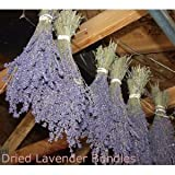 "Lavender Dried Bundles - 24"" Long, Guaranteed!"