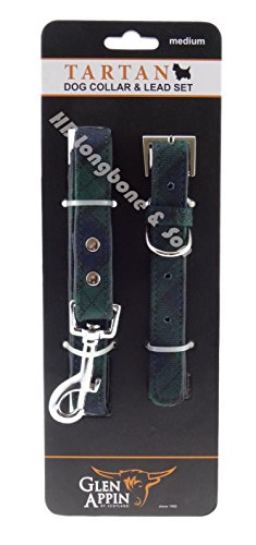 dog-puppy-christmas-present-blue-green-tartan-black-watch-collar-lead-set-medium