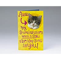 Good Vibrations Kitty Birthday Card