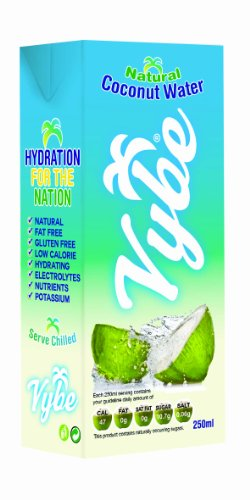 Vybe 100 Percent Pure Natural Coconut Water 250 ml (Pack of 24)