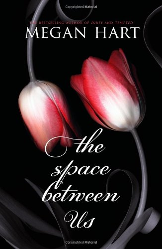 The Space Between Us by Megan Hart