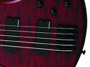 Schecter Stiletto Custom-5 Electric Bass (5 String, Natural Satin) from SCHAM