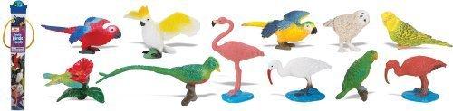 Safari Ltd Exotic Birds TOOB by Safari Ltd. TOY (English Manual)