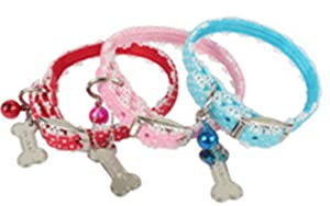 pinkaholic New York Dog Polka Dot and Lace Collar, NAHA-AC003, Sky Blue