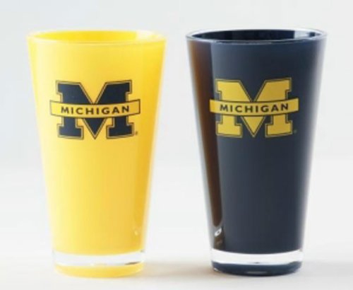 Duck House 9413101659 20 oz. Michigan Wolverines Tumbler