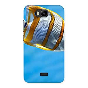Special Fish Multicolor Back Case Cover for Honor Bee