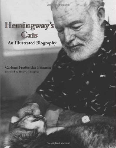 ernest hemingway biography essay Old man and the sea essay that analyzes the story there is a brief biography of the great author, his life and works.