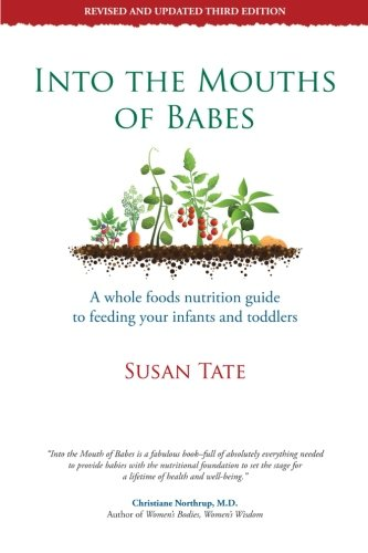 Into The Mouths Of Babes: A Whole Foods Nutrition Guide To Feeding Your Infants And Toddlers front-683788