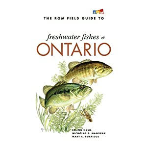 The ROM Field Guide to Freshwater Fishes of Ontario Erling Holm, Nick Mandrak and Mary Burridge