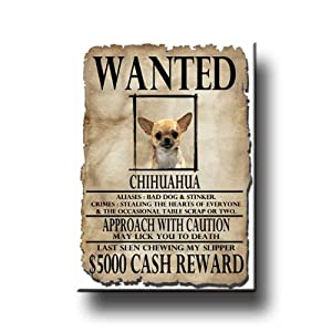 Chihuahua Wanted Fridge Magnet No 1