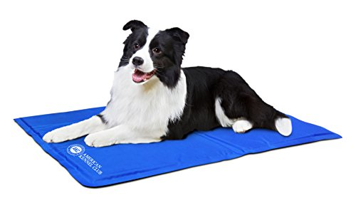 American Kennel Club AKC 610-Blue Pet Cooling Mat