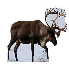 Partyrama - Figura de cartón de tamaño natural, diseño de reno