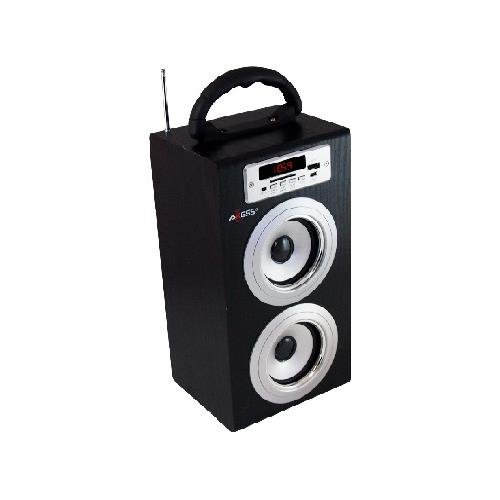 Axess Sp1002-Sl Music Box Speaker Includes Fm Stereo, Usb/Line-In/Sd Inputs, Remote Control, Rechargeable Battery (Silver)