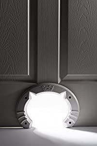 Built In Cat Door for Medium & Large Cats | Fits Interior Hollow Core or Solid Wood Doors | Template, Self Drilling Screws, Instructions Included | 8x6.5 Inches from Purrfect Portal