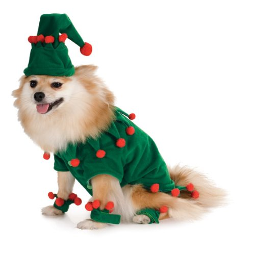 Elf Pet Costume, Large - 1