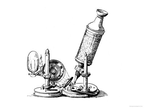 Robert Hooke'S Microscope Giclee Print Art (32 X 24 In)