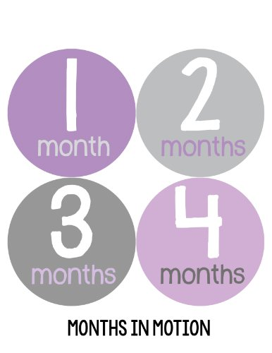 Months in Motion 157 Monthly Baby Stickers Milestone Age Sticker Girl Photo Prop