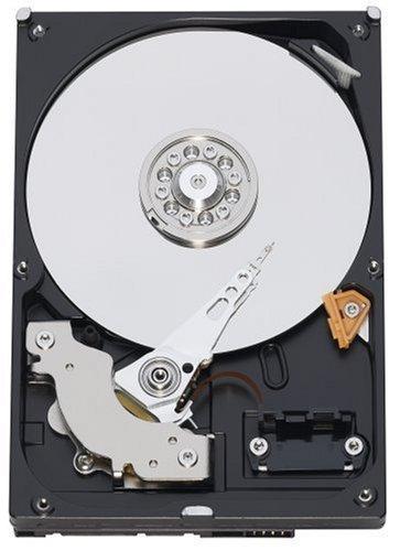 WD Caviar Blue WD3200AAKS - Hard drive - 320 GB - internal - 3.5